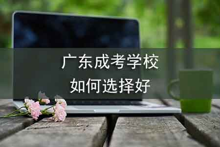 广东成考学校,如何选择好