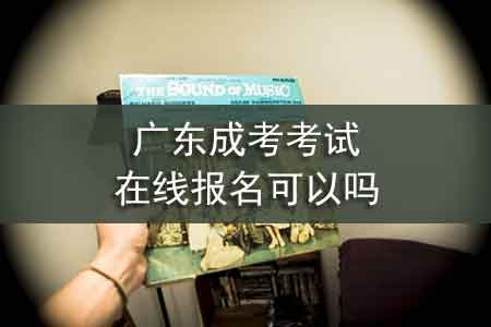 广东成考考试在线报名可以吗