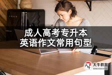 成人高考专升本英语作文常用句型