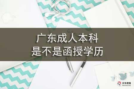 广东成人本科是不是函授学历