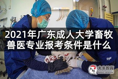 2021年广东成人大学畜牧兽医专业报考条件是什么