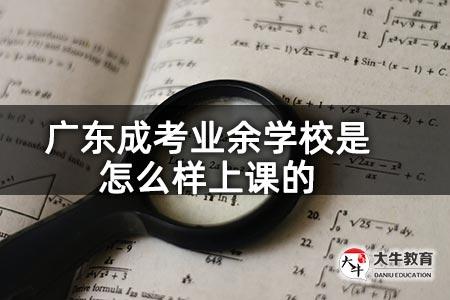 广东成考业余学校是怎么样上课的