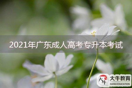2021年广东成人高考专升本考试