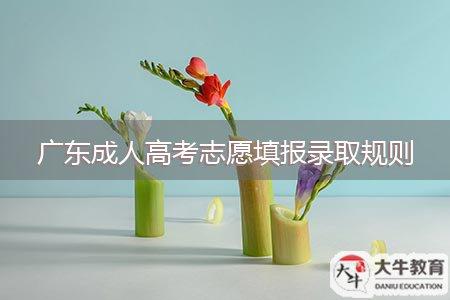 广东成人高考志愿填报录取规则
