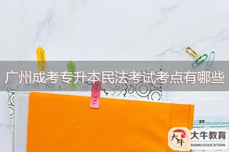 广州成考专升本民法考试考点有哪些